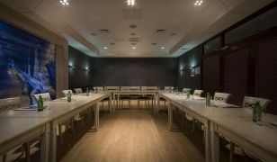 Hotel Grand Sal**** Conference Room